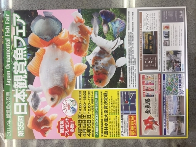 第35回日本観賞魚フェア
