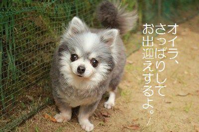 s-IMG_6104.jpg