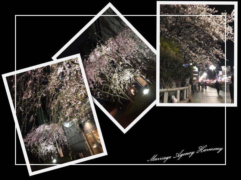 20170405_tokyo_05.jpg