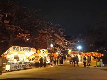 YOZAKURA2017042101.jpg