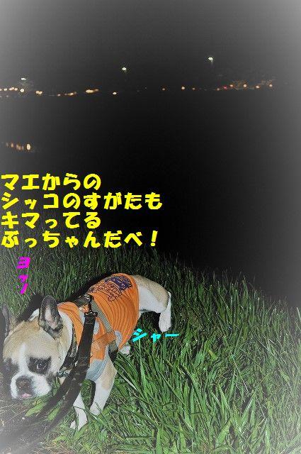 DSC_0023_20170410142520e98.jpg