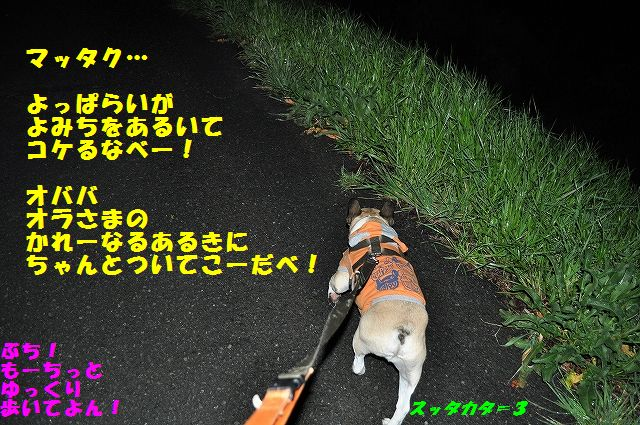 DSC_0050_20170410142529a17.jpg