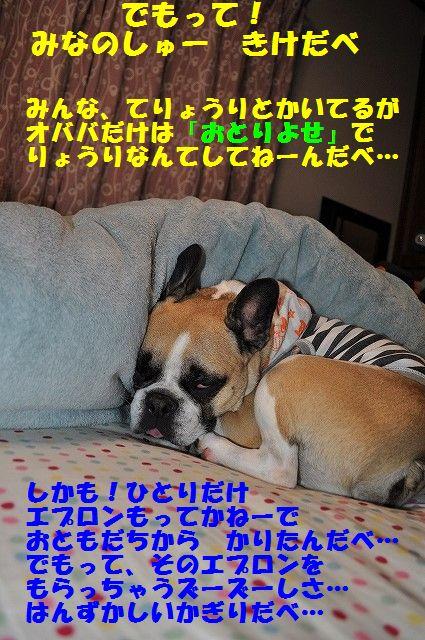 DSC_0240_20170321095117ebf.jpg