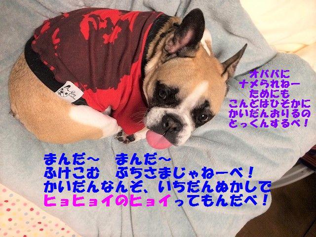 IMG_0903_201702181118168cf.jpg