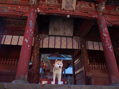 浅間神社にて