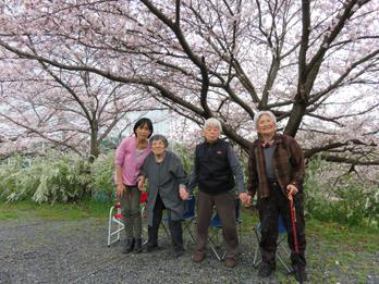 花見の写真5