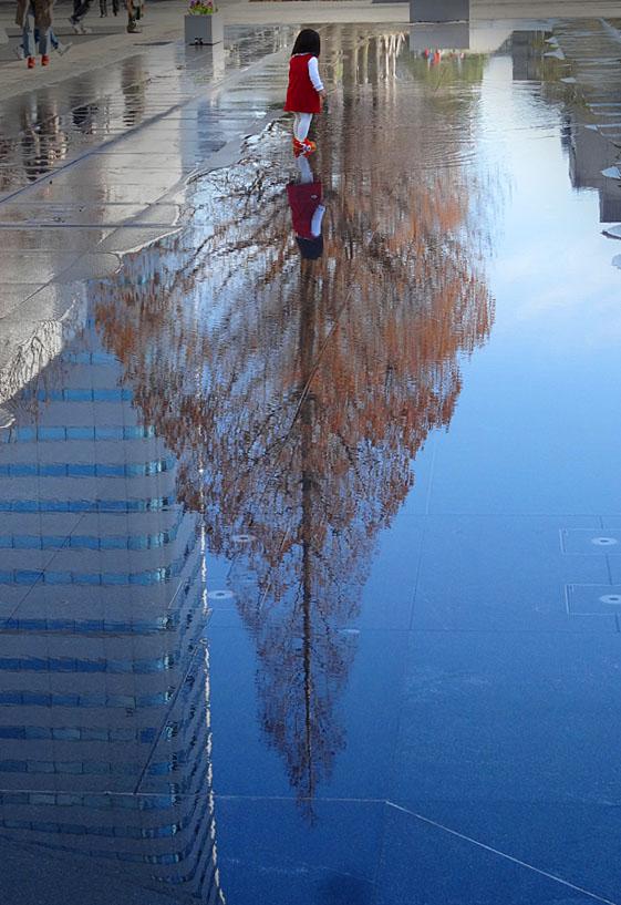 170225映る樹と少女