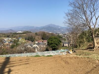 金目 里山1