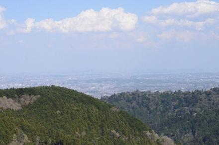 小仏城山頂上から桜