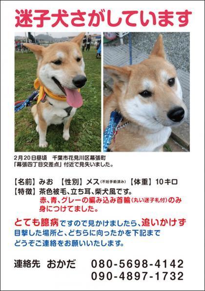 みお捜索_convert_20170221092436