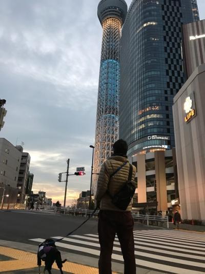 ほたるちゃん5(2017-2-2)_convert_20170302153104