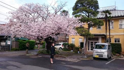 20170413Hotel Kamakura