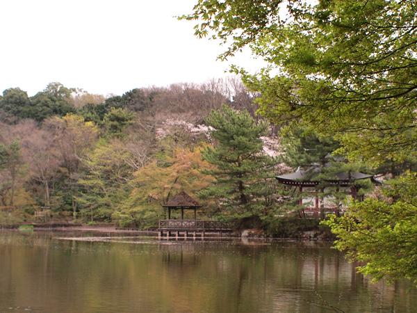 4月石神井