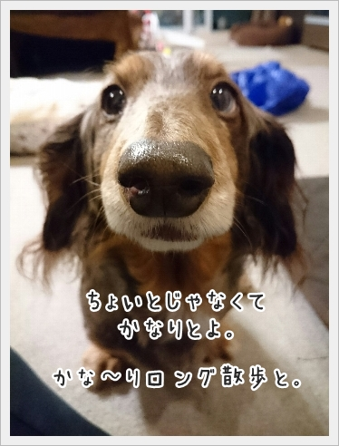 fc2_2017-02-15_04.jpg