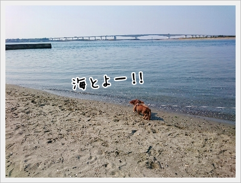 fc2_2017-03-23_03.jpg