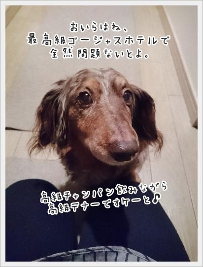 fc2_2017-04-21_04.jpg