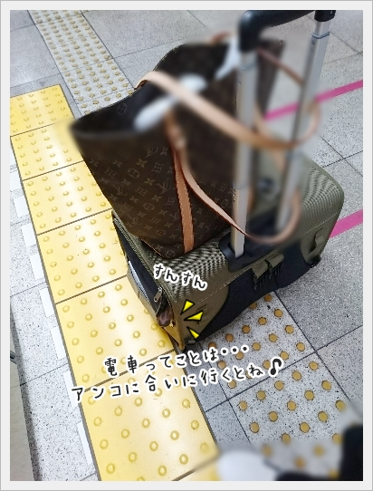 fc2_2017-05-02_02.jpg