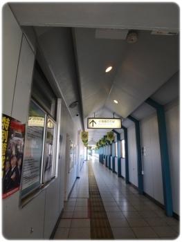 P2281029.jpg