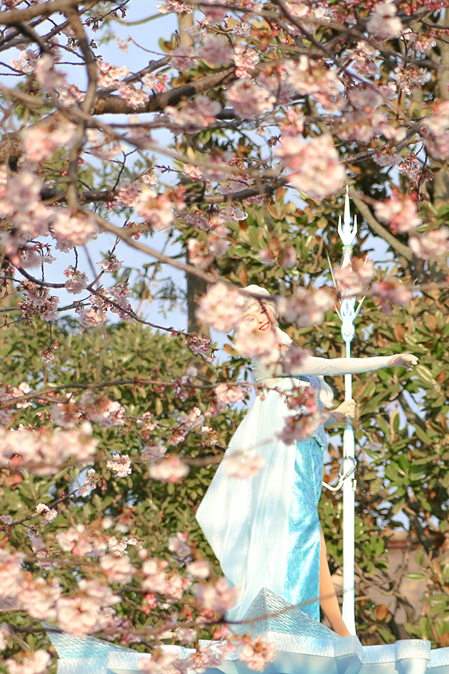 桜フロファン1
