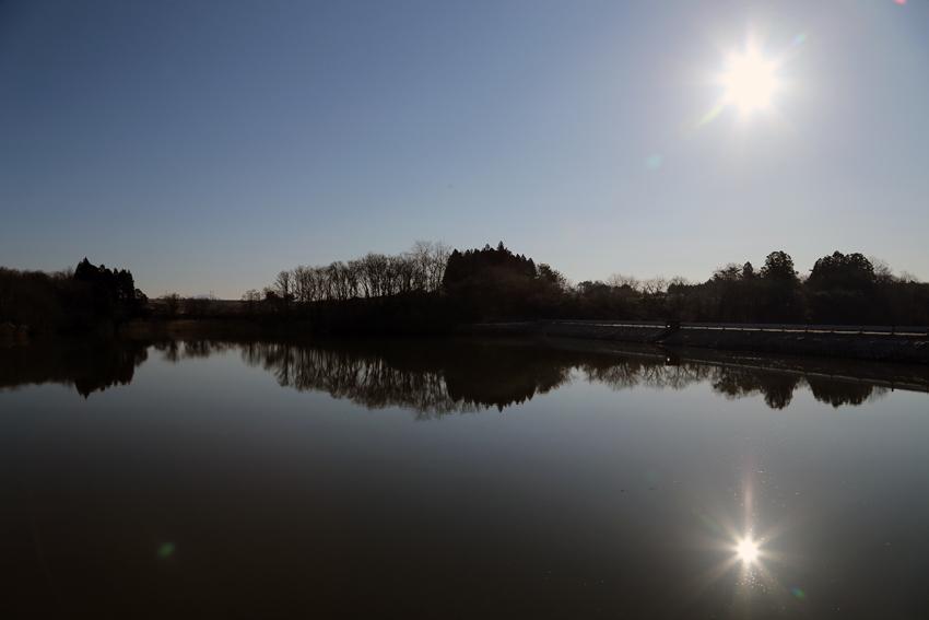 20170311大堤に写り込む太陽と木々