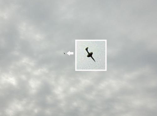 マルヨン、飛行中~!