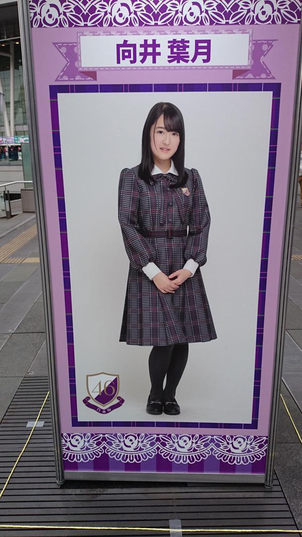 乃木坂46バスラSSA 向井葉月パネル