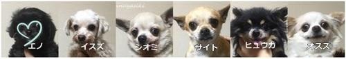 みやざき0325