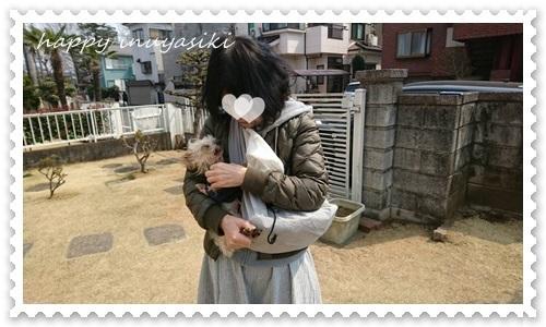mini16IMG_0533-20170321.jpg