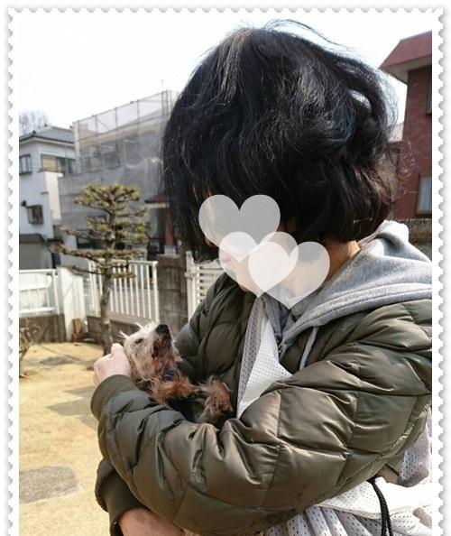 mini16IMG_0534-20170321.jpg
