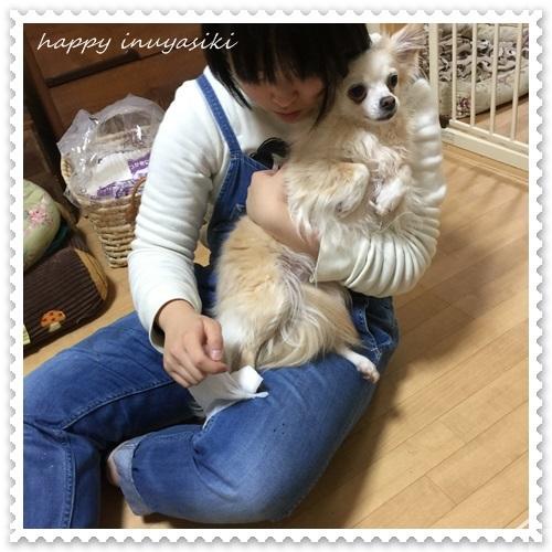mini16IMG_1161-20170330.jpg