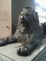 P1001488三越ライオン