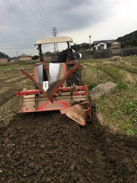 じゃが芋植え馬渡り2畝5