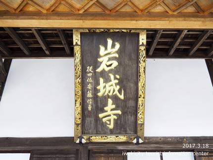 常勝院 八房の梅 [平成29年3月18日(土)更新]13