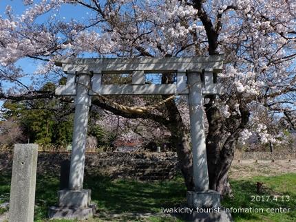 立鉾鹿島神社[平成29年4月13日(木)更新]4