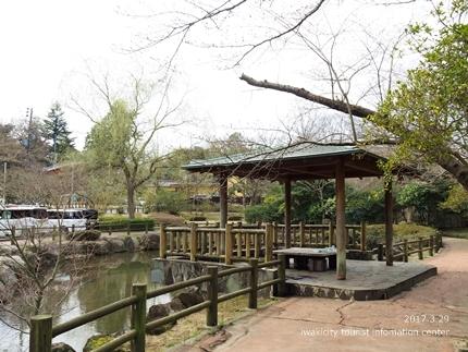 0328松ヶ岡公園1