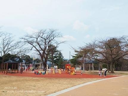 0328松ヶ岡公園5