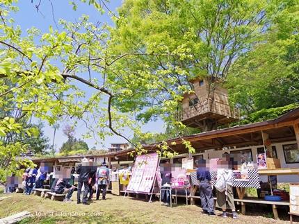 いわき万本桜「春祭2017-3