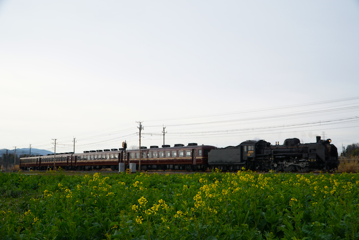 17DSC08737.jpg