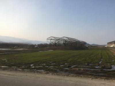 堀跡と思われる水田と、郭跡と思われるさくらんぼ畑