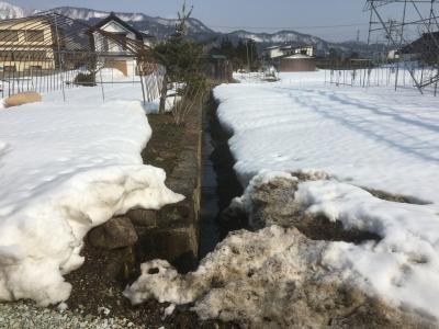 三の堀跡の水路