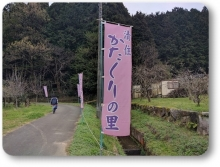 20170410katakuri (3)