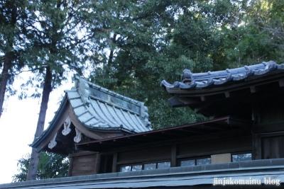 久伊豆神社(蓮田市駒崎)12