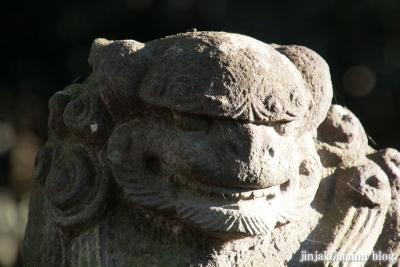 久伊豆神社(蓮田市駒崎)22