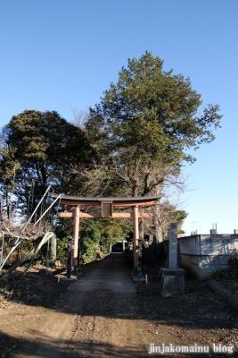 久伊豆神社(蓮田市駒崎)1