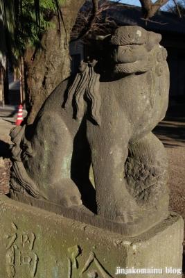 久伊豆神社(蓮田市駒崎)19