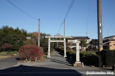 久伊豆神社(蓮田市井沼)1