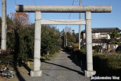 久伊豆神社(蓮田市井沼)3
