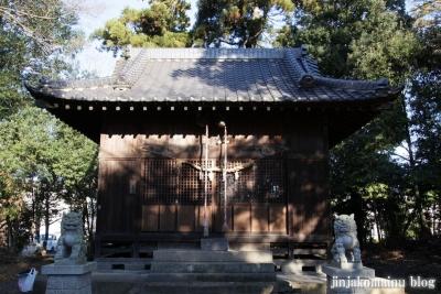 久伊豆神社(蓮田市井沼)8
