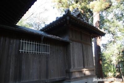 久伊豆神社(蓮田市井沼)12