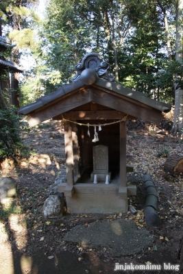 久伊豆神社(蓮田市井沼)13